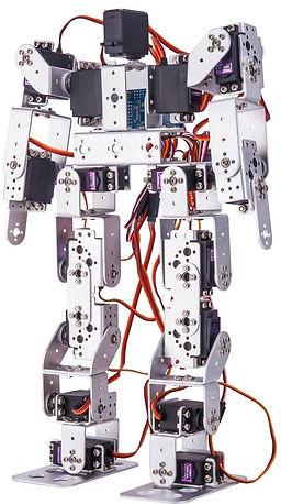 MetalRobot (1)_edited.jpg