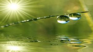 Les principes de base de la naturopathie : l'hygiénisme