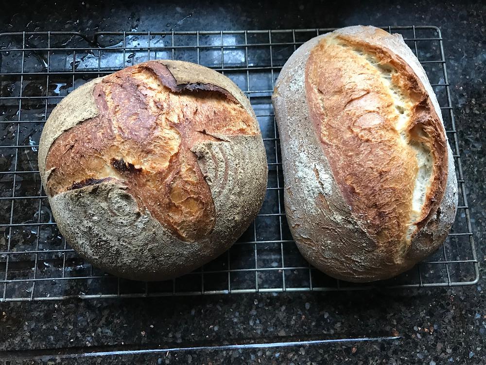 Delicious home made bread
