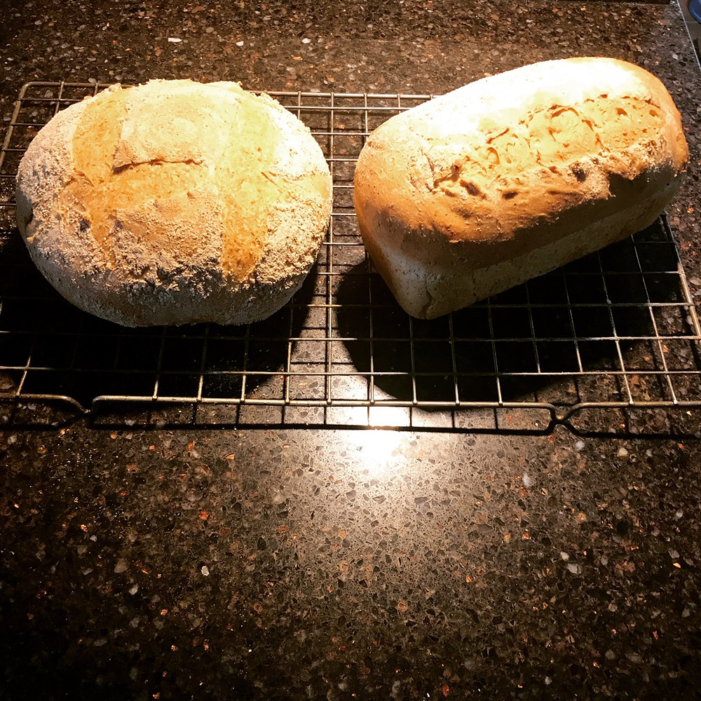 Rustic home made bread