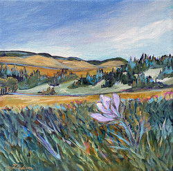 """Springtime in the Porcupine Hills 8 x 8"""""""
