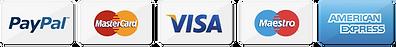 PayPal, Matrcard, VISA, Maestro, American Express, SUH SOO MI