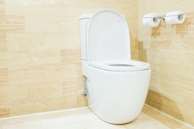 cleaning clogged toilet