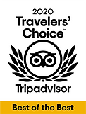 2020 Travelers Choice PNG.png