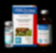 ferlocina-crop-u161127.png