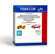 febecur-4-crop-u162707.png