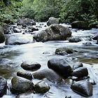 Gentle Stream