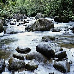 Creek running.