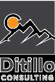 DitilloConsulting_Logo_edited.png