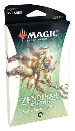 Magic The Gathering Zendikar Rising Theme Boosters