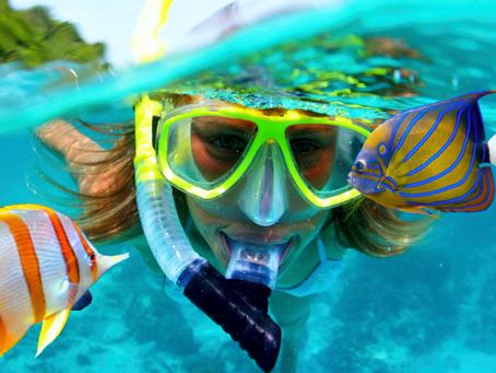 Где можно увидеть красивый подводный мир