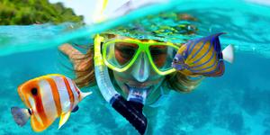 где найти подводный мир, красивые рыбки где увидеть, OvLGroup,