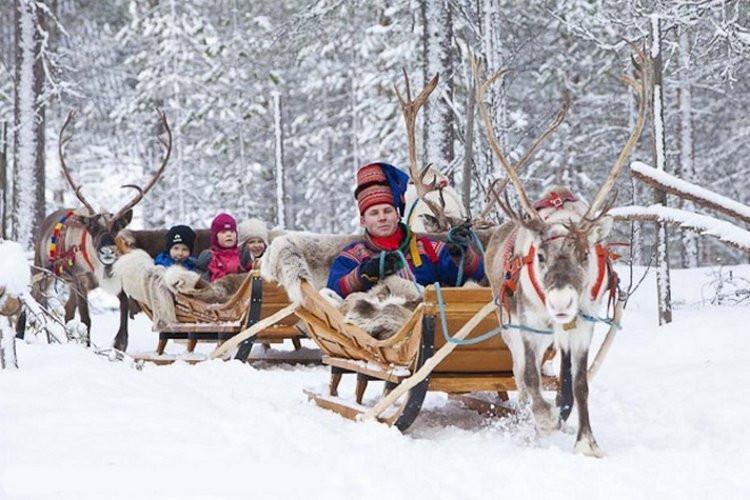 катание на оленях в Лапландии, Финляндия,OvLGroup,