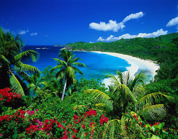 Мальдивы , OvLGroup_Туры_и_Путешествия , отпуск, отдых с семьей,