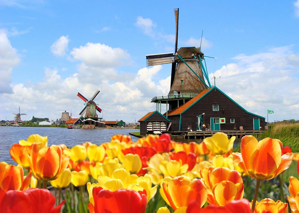 Нидерланды,путешествия, отдых в амстердаме,OvLGroup,
