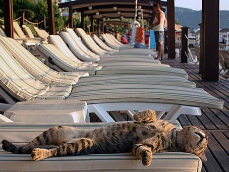 Почему сейчас очень выгодно бронировать туры  и отдыхать в Турции