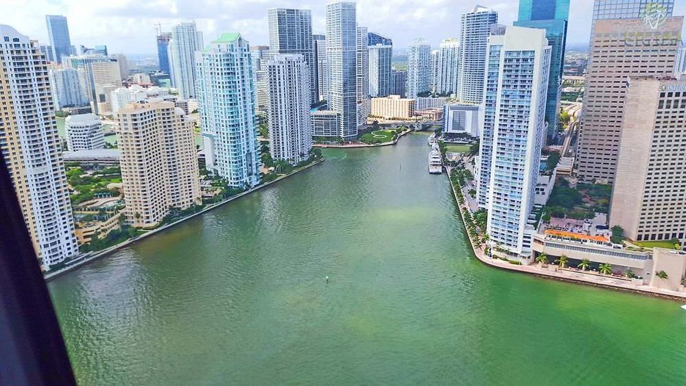 Майами,OvLGroup,
