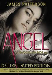 Angel Limited Edition.jpeg