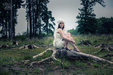 Sweet & Wild Photography