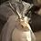 "Thumbnail: Historic Horns ""White Bride Story"""