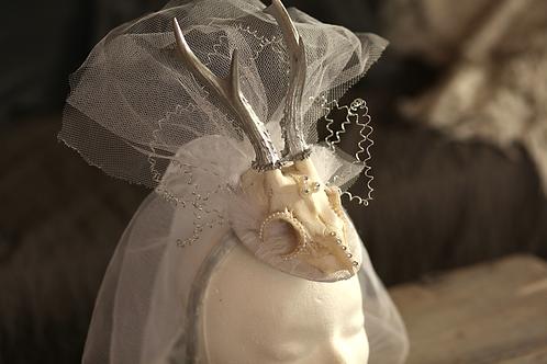 """Historic Horns """"White Bride Story"""""""