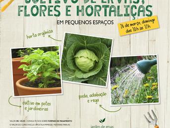 Curso de horta orgânica em pequenos espaços, no Espaço Sathya em Guarulhos