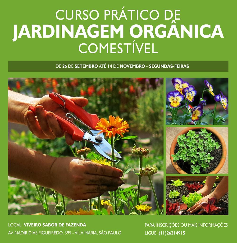 curso-prático-de-jardinagem