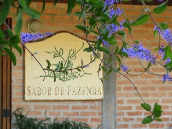 Sabor de Fazenda, um viveiro escola logo ali na Vila Maria