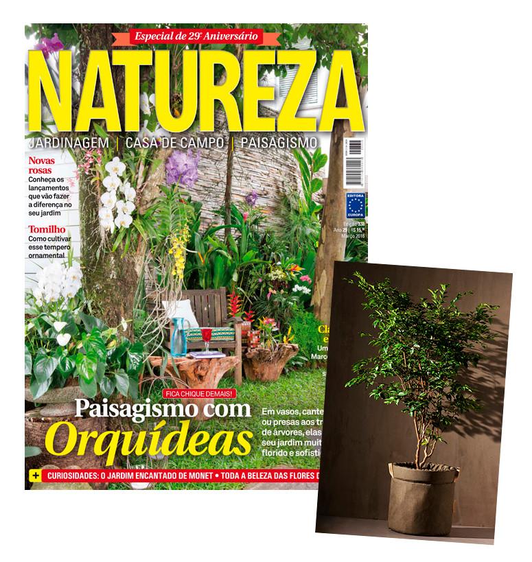 revista natureza mostra como usar cachepôs jardim de ervas