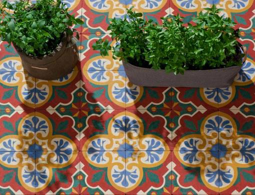 vasos com temperos orgânicos