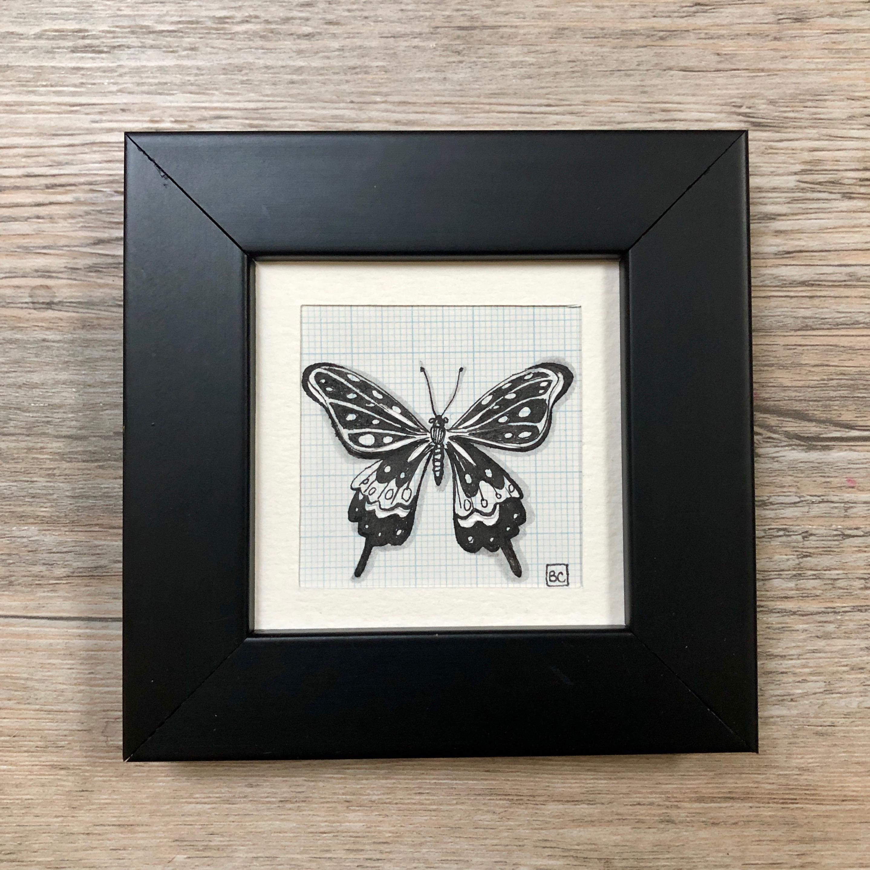 Papillon #14