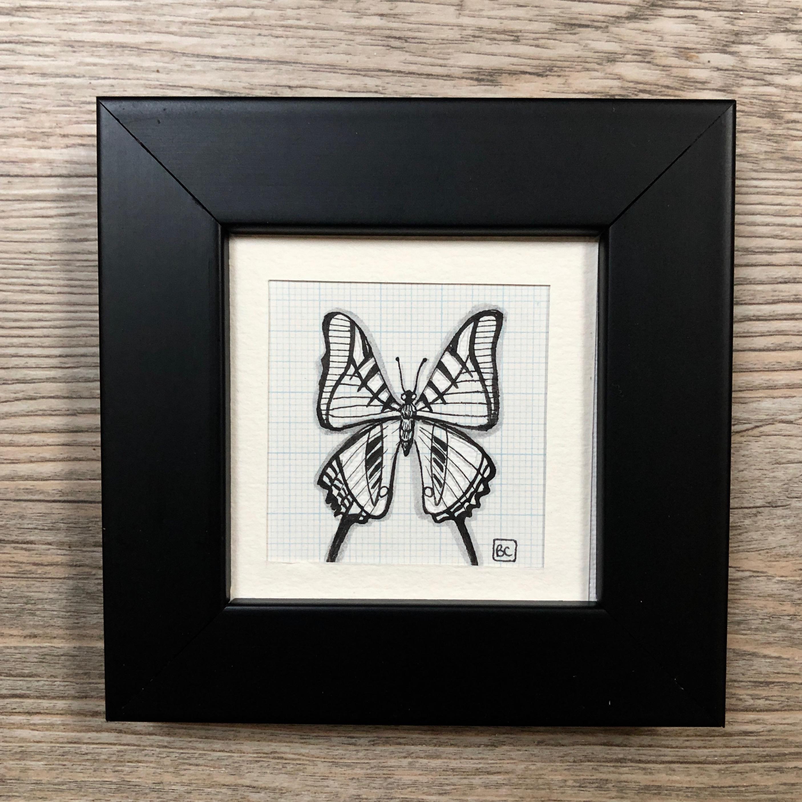 Papillon #9