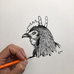 Chicken (#5 Poulet)