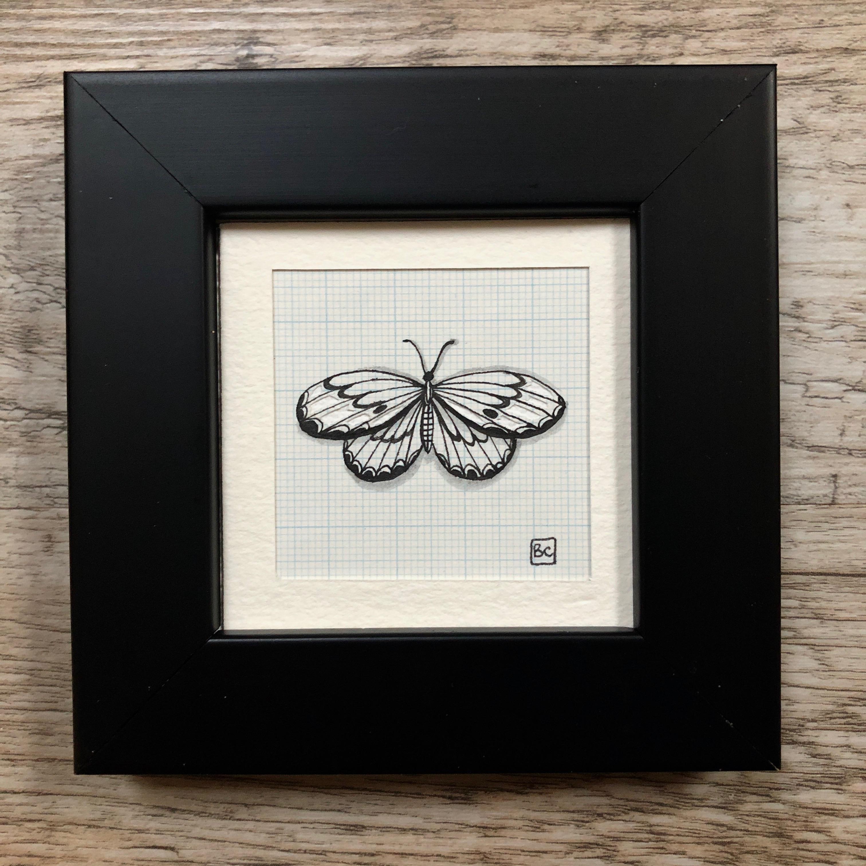 Papillon #1