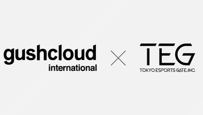 Gushcloud International Concludes Capital and Business Alliance with Tokyo eSports Gate, Inc.