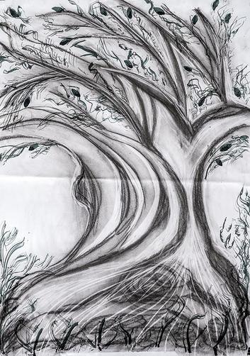 liliana jakovljevic stavri