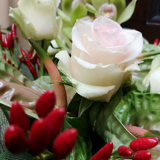 Chillies and Roses
