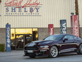 Shelby: An overlooked Las Vegas Experience