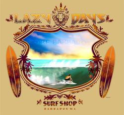 lazy days lion surf