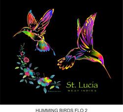 humming birds FLO 2