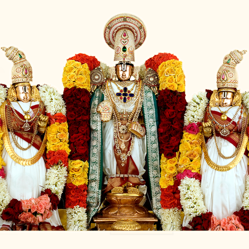 KALYANAM - 2019 | Sri Venkateswara swamy Temple of Wellington