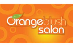 orange blush salon franchising phili