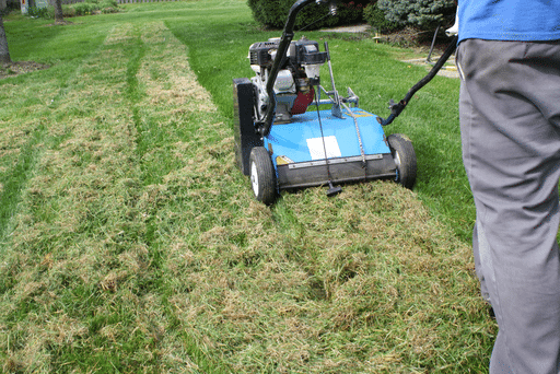 power raking lawn