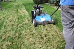 power raking lawn