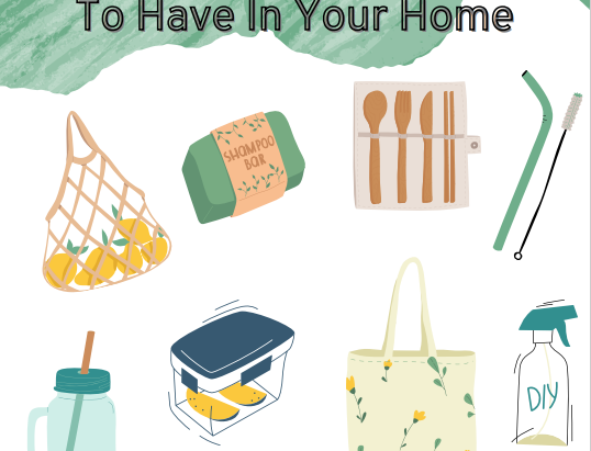 Eco-Friendly Product Swaps To Have In Your Home
