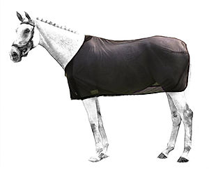 airtex-rug-horse