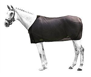 coperta-rete-cavallo
