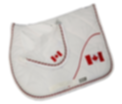 saddlecloth-white-flag