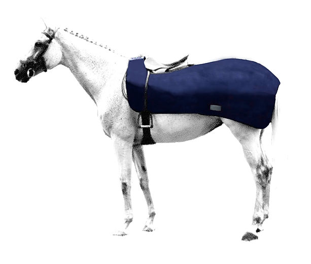 exercise-rug