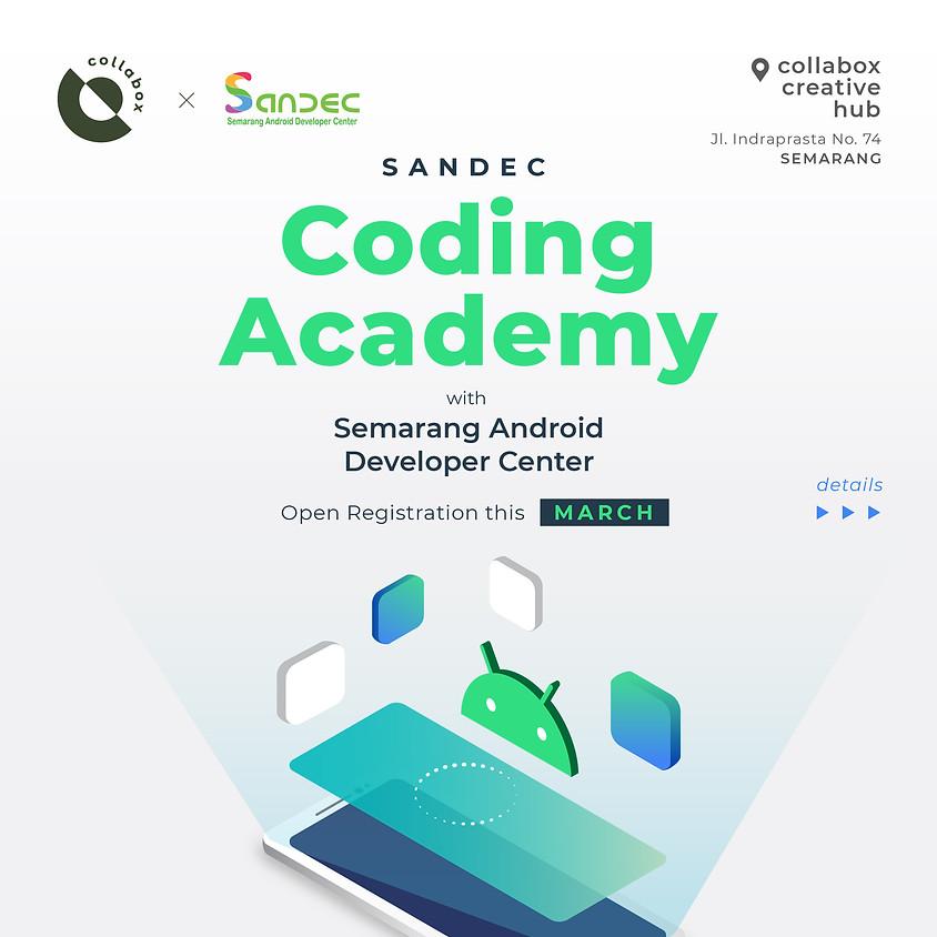 SANDEC Coding Academy
